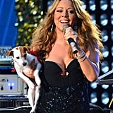Mariah Carey was joined by one of her many Jack Russell Terriers on stage at the September 2012 NFL Kickoff Concert in NYC.