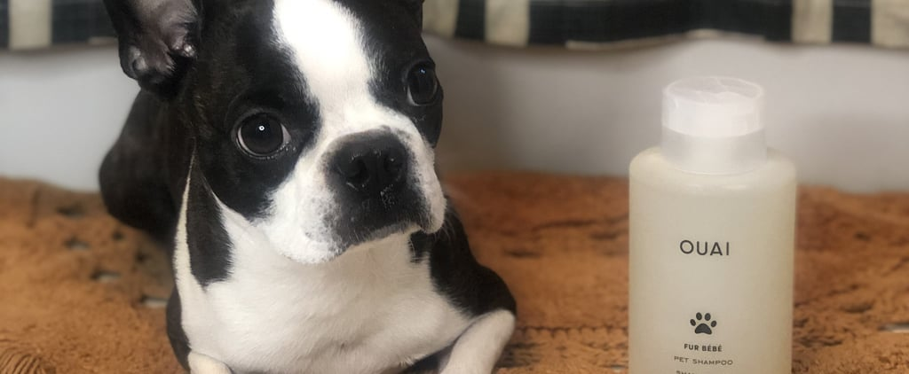 Ouai Fur Bébé Dog Shampoo Review