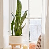 Liv Footed Planter