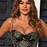 Sofia Vergara's Red-Brown Hair Colour