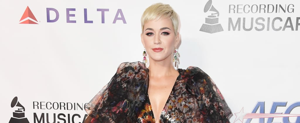 Katy Perry Josh Kloss Sexual Assault Allegations