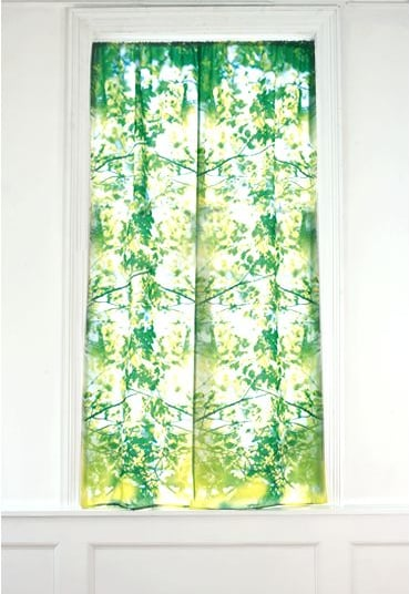 Cool Idea:  Curtains to Improve the View