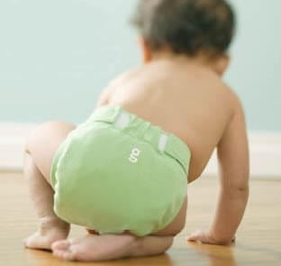 The Baby Kit: gDiapers