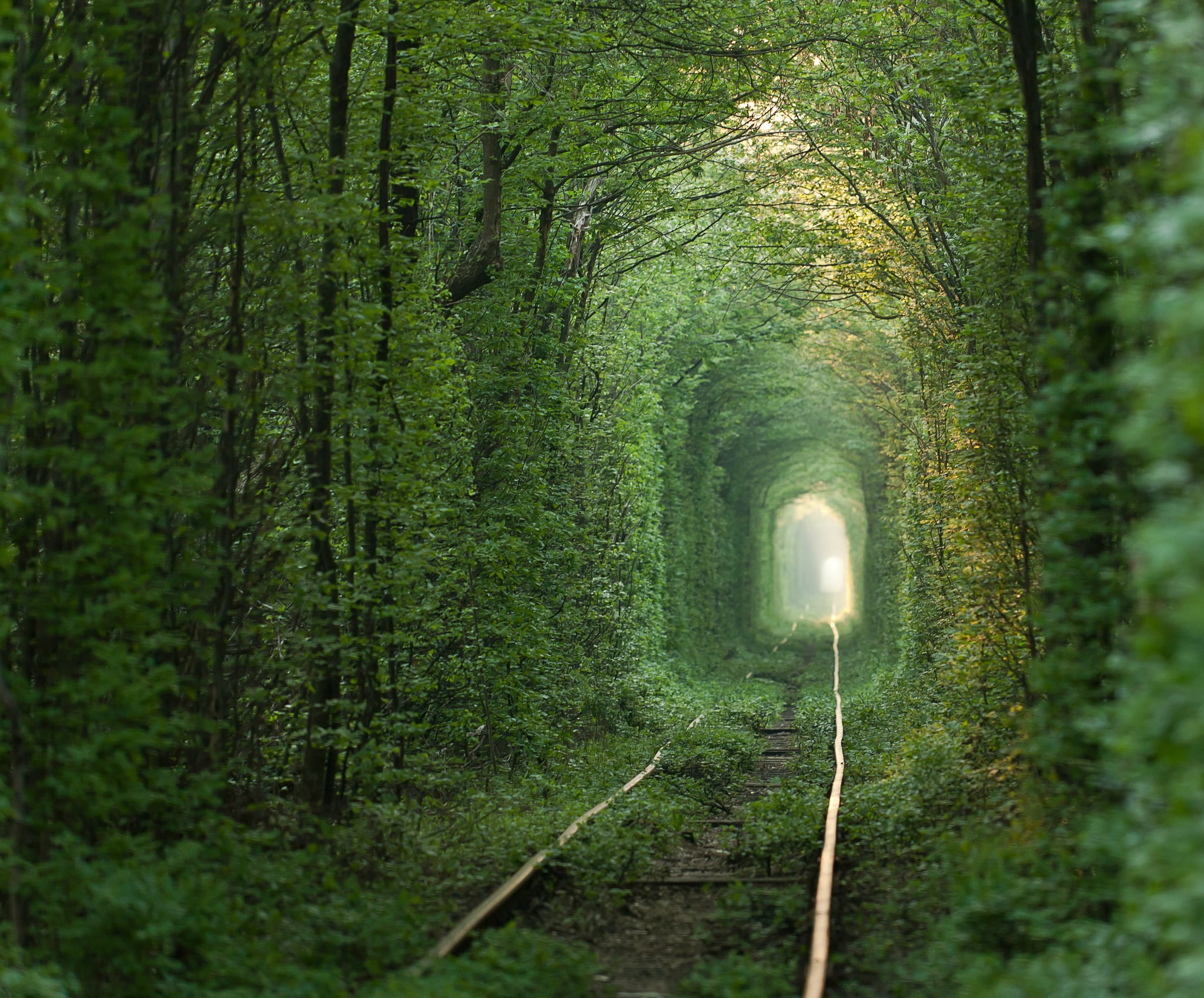 Hold Hands With a Sweetheart to Cross the Tunnel of Love in Ukraine