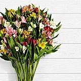 100 Blooms of Peruvian