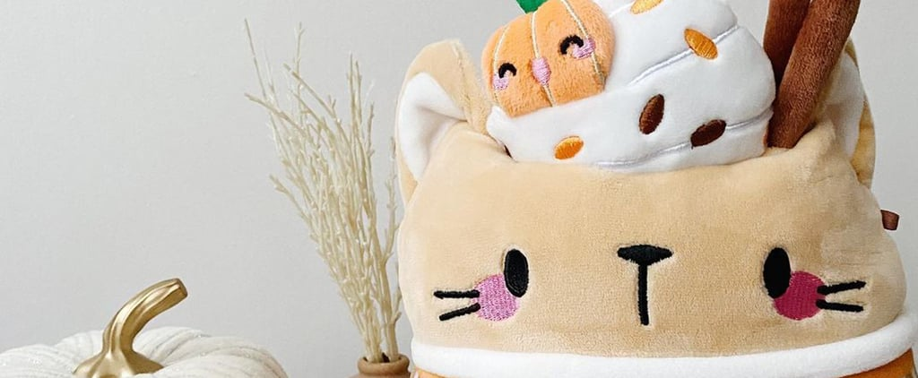Check Out the Cinda Pumpkin Spice Latte Squishmallow!