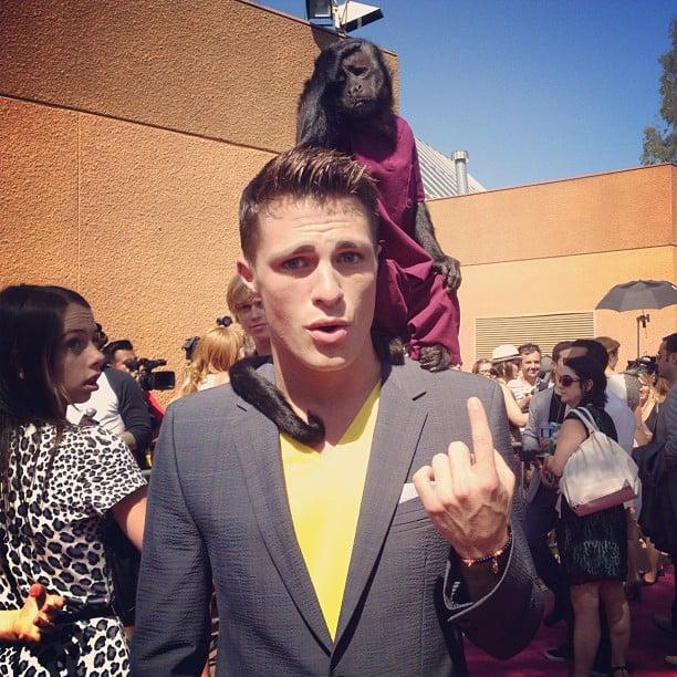 This Monkey