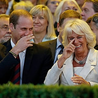 Prince William, Prince Harry, Camilla Parker Bowles Pictures