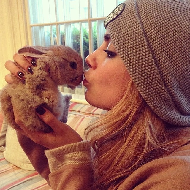 Cara Delevingne got a new bunny named Cecil Bunny Delevingne. Source: Instagram user caradelevingne
