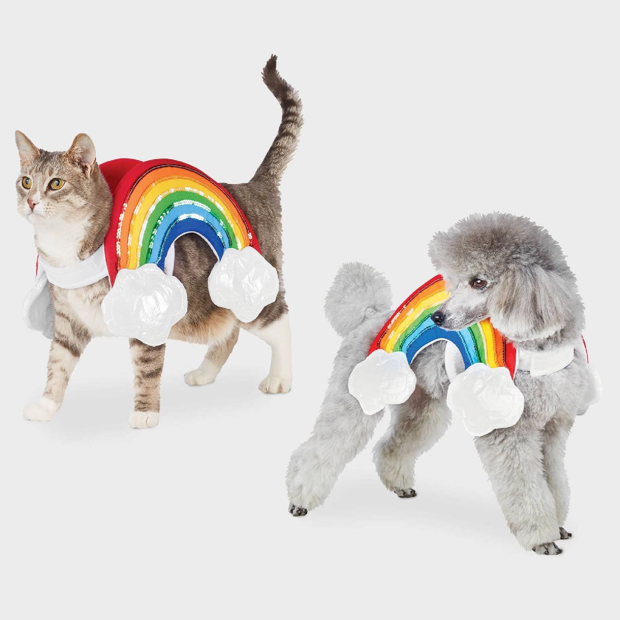 Halloween 2020 Pet Pet Halloween Costumes For Cats and Dogs at Target 2020 | POPSUGAR