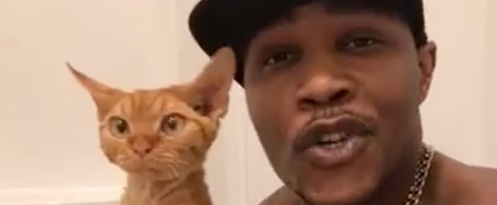 Grab a Towel: This Hot Cat Dad Rapping in the Bath Is About to Make You Sweat