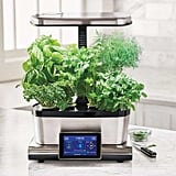 AeroGarden Touch With Gourmet Herbs Seed Pod Kit
