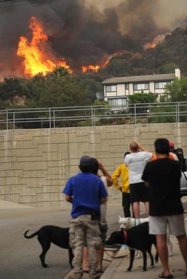 How-To: Stay Safe During a Wildfire