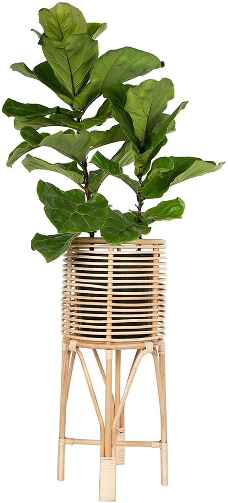 Amazon Kouboo Rattan Indoor Plant Stand
