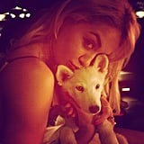 Rita Ora snuggled with a sweet pup. Source: Instagram user ritaora