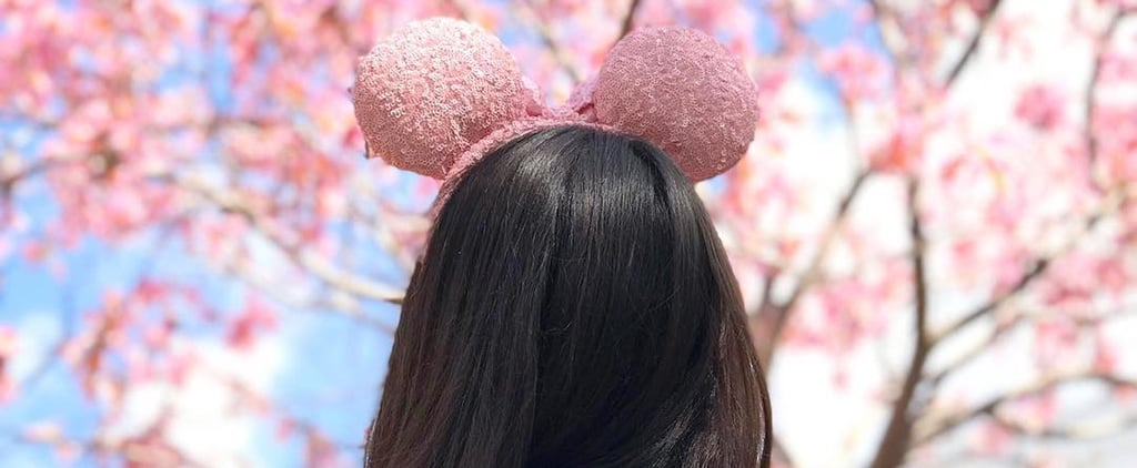 Disney Millennial Pink Mouse Ears and Spirit Jersey