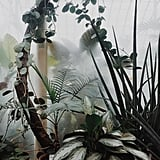"""""""This morning we took a walk through the Gothenburg Botanical Gardens. We were the only ones in the entire arboretum, which made it feel like we had our own secret jungle. This room smelt divinely of sweet plumeria."""""""