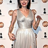Angelina Jolie Silver Versace Dress