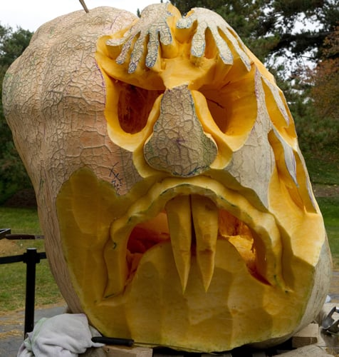 Out of Its Gourd