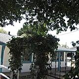 Comfy House in Seaside, California