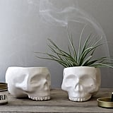 You can never go wrong with sleek ceramic decor like these white skull planters ($32 each).