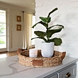 Small Faux Fiddle Leaf Fig