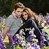 The End of Twilight