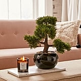 Round Faux Bonsai Tree