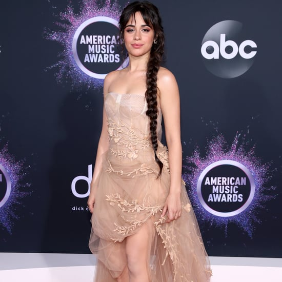 Camila Cabello's Oscar de la Renta Tulle Dress at the AMAs