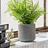 Potted Fern Faux Plant