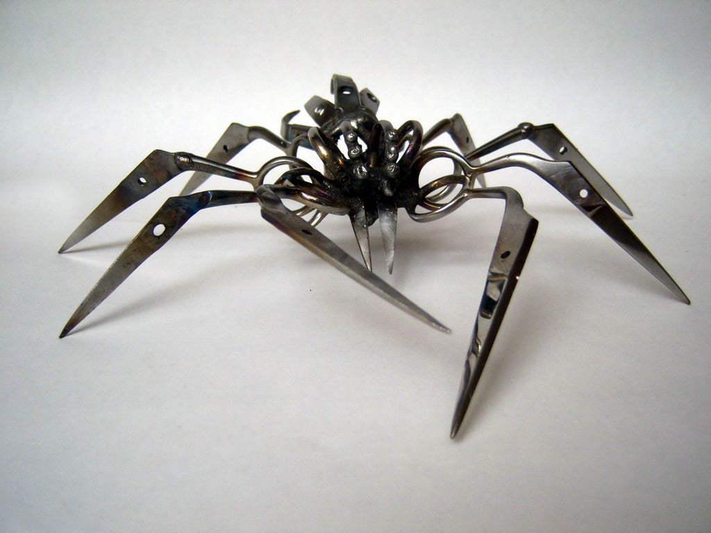 Wild Art: Scissor Spiders
