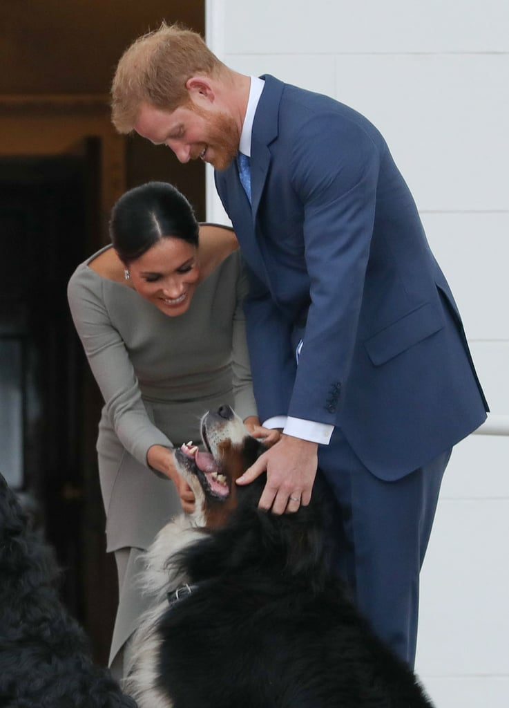 Harry and Meghan were adorable as they played with President Michael Higgins's dog during their visit to Ireland in July 2018.
