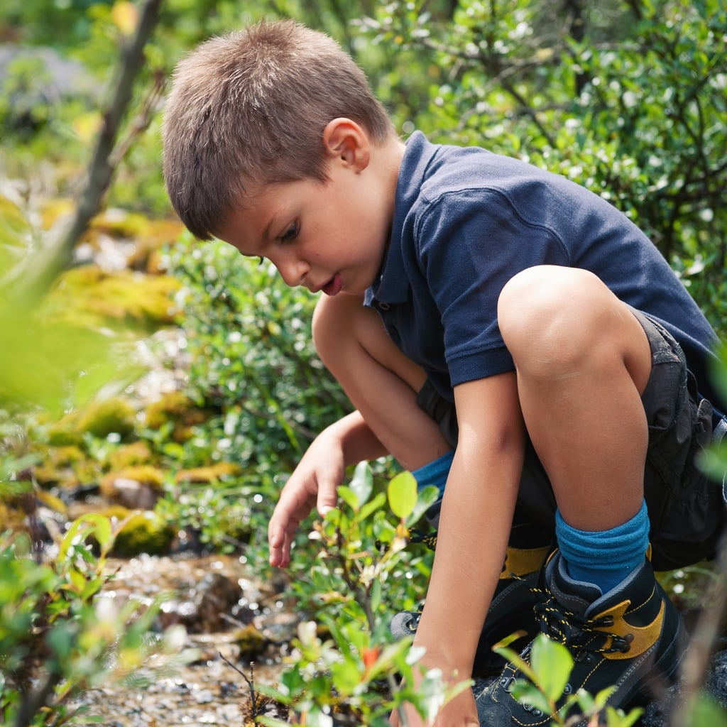 Kid-Safe Bug Sprays and Repellents