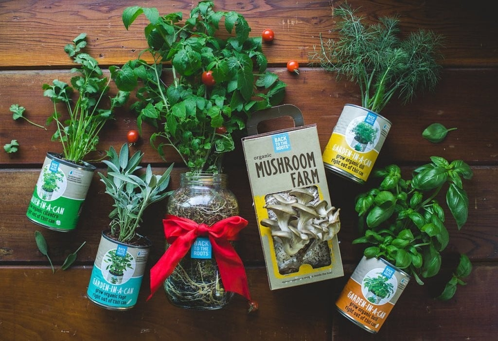 Eco-Friendly Gifts for Mom