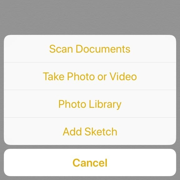 How to Scan Documents on an iPhone Using the Notes App | POPSUGAR Tech