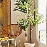 Yucca Potted Faux Tree
