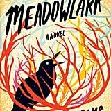 Meadowlark by Melanie Abrams