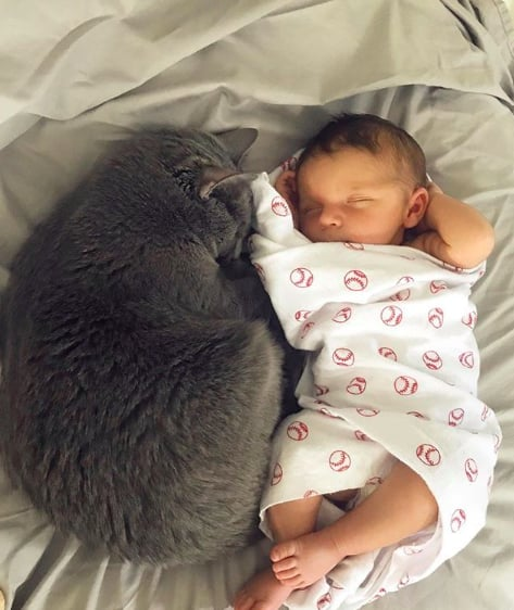 These Photos of Cats With Their Tiny Humans Prove Dogs Have Nothing on Felines