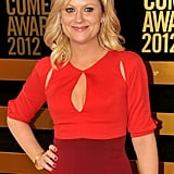Amy Poehler attended the Comedy Awards in NYC.