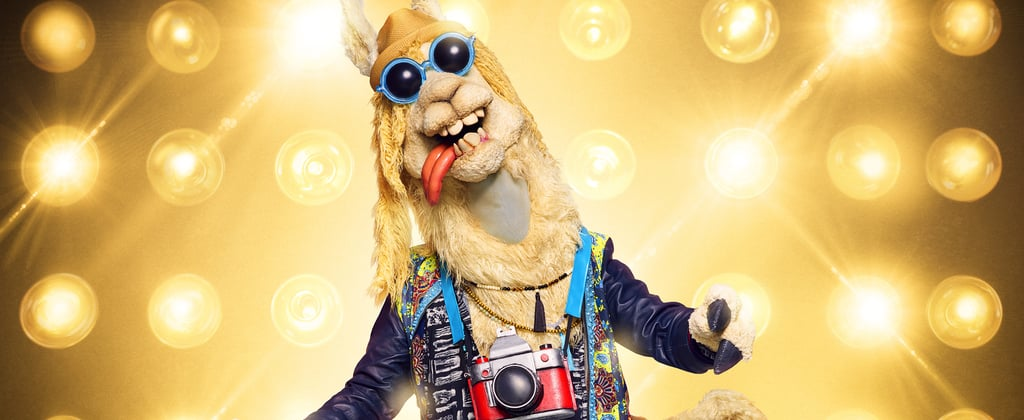 Who Is on the Masked Singer Season 3?