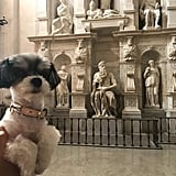 I even got to take in the Moses sculpture by Michelangelo!