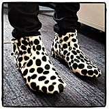 How adorable are intern Bry's pony-hair boots!?