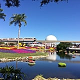 Epcot's International Flower and Garden Festival