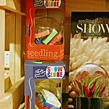 Seedling Make Your Own Snow Globe