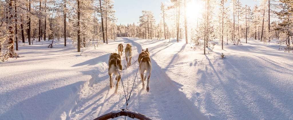 5 Reasons Levi, Lapland, Is the Perfect Winter Wonderland Destination