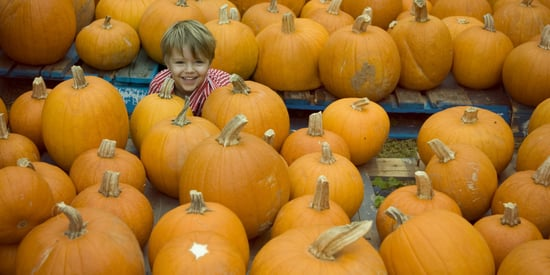 All The Things You Don't Have To Do With Your Kids This Fall