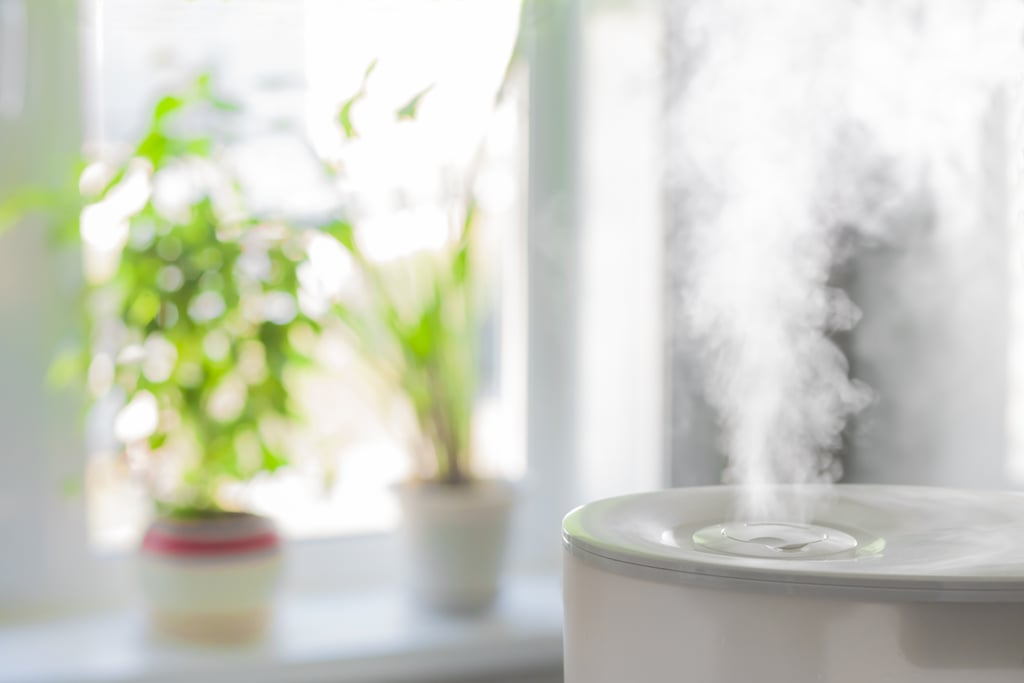Befriend a Humidifier in the Winter
