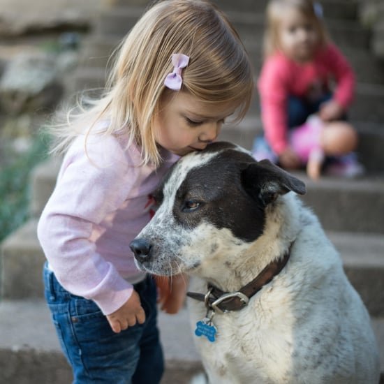 Dogs Prevent Allergies and Obesity in Children