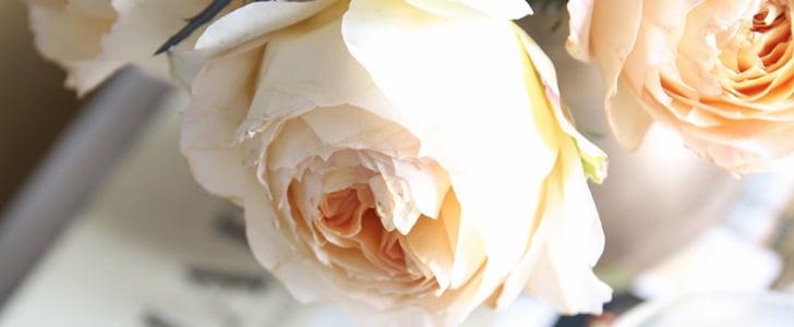 5 Simple Tips to Make Roses Last Longer