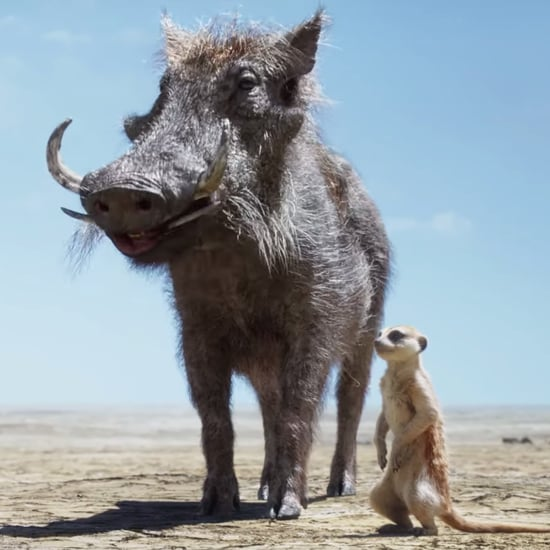 Timon and Pumbaa Saving Simba in The Lion King Video